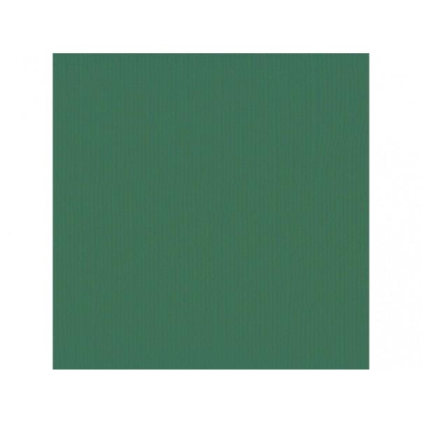 Papir, s teksturo, barva bora