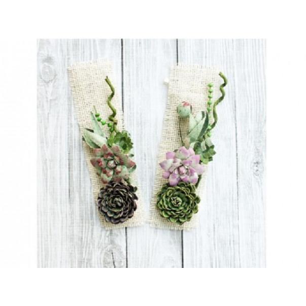 Papirnate rože, set kaktusov