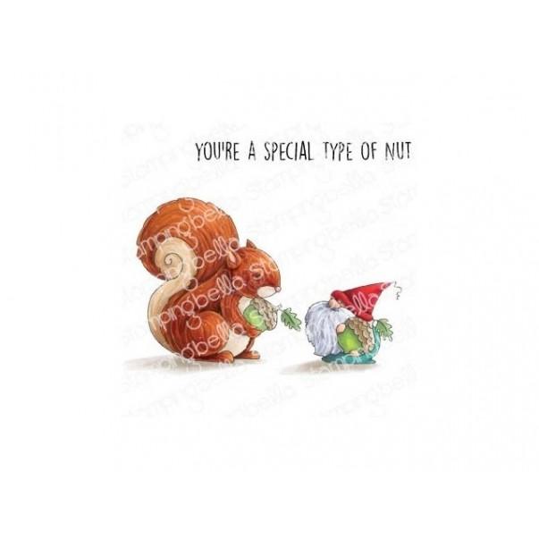 Štampiljka, The Gnome And The Squirrel