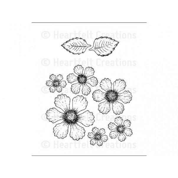 Štampiljka, Botanical rose