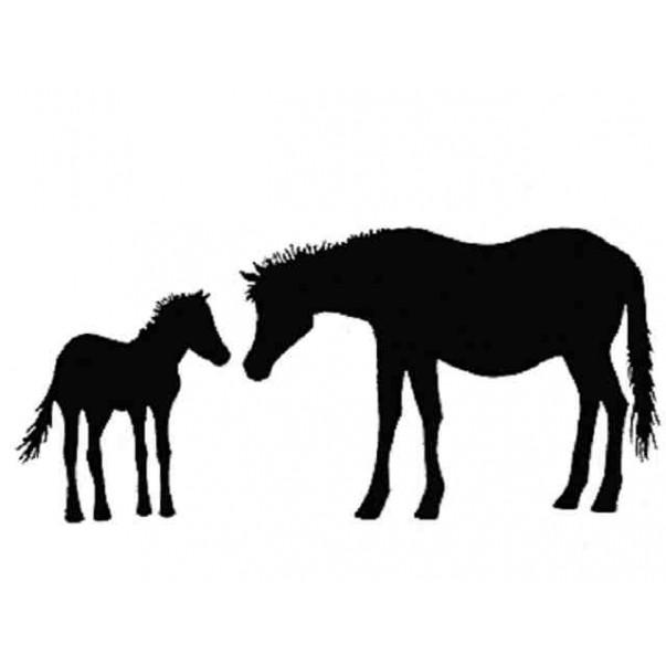 Štampiljka, Horse and foal