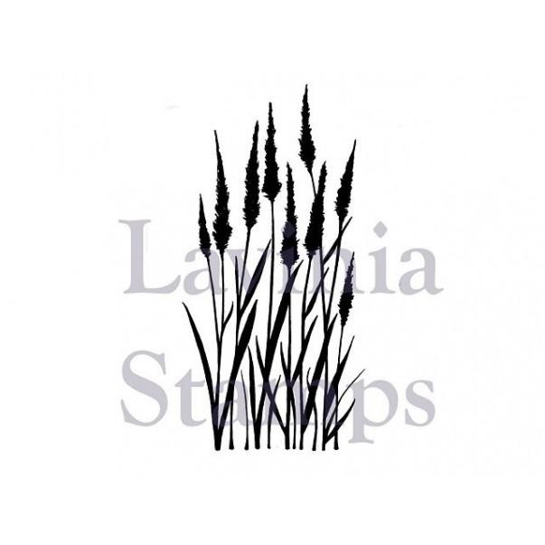 Štampiljka, Meadow grass