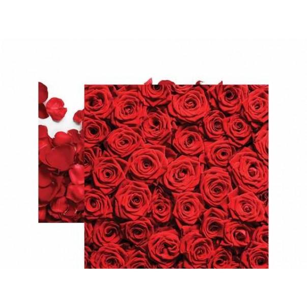 Papir, Red Roses