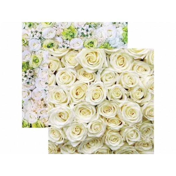 Papir, White Roses