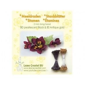 Prašniki, Black & Antigue Gold