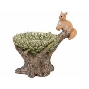 Veverica v drevesnem deblu