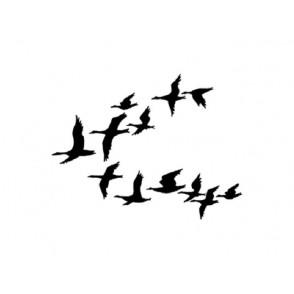 Štampiljka, Ducks