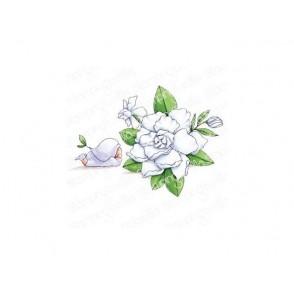Štampiljka, Bundle Girl With Gardenia
