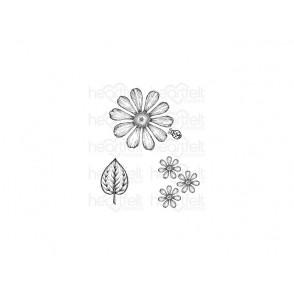 Štampiljka, Large Garden Zinnia
