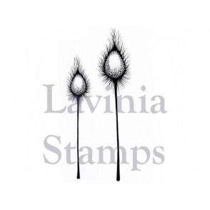 Štampiljka, Fairy thistles