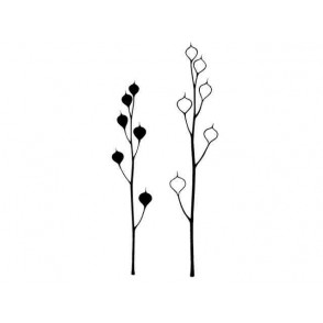 Štampiljka, Seed heads