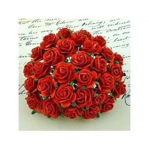 Odprte vrtnice, rdeče