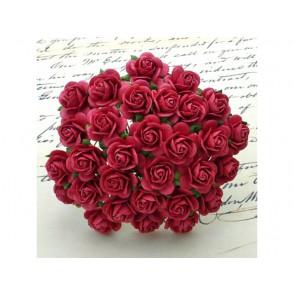 Odprte vrtnice, koralno rdeče