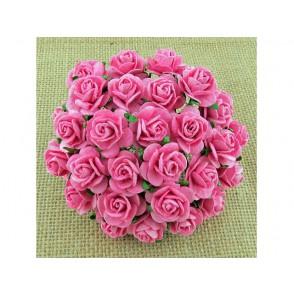 Odprte vrtnice, roza