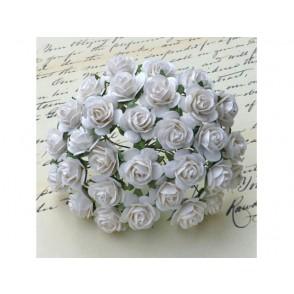 Odprte vrtnice, bele