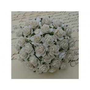 Odprte vrtnice, barva slonovine