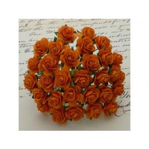 Odprte vrtnice, oranžne