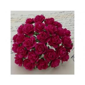 Odprte vrtnice, barva fuksije