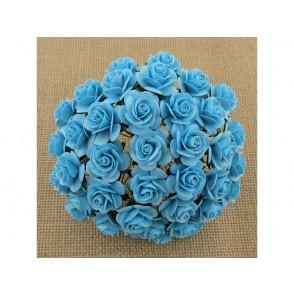Odprte vrtnice, svetlo turkizne