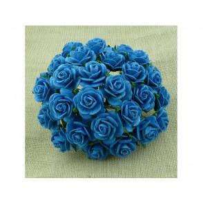 Odprte vrtnice, turkizne