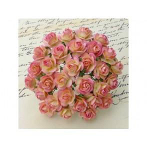 Odprte vrtnice, barva šampanjca roza