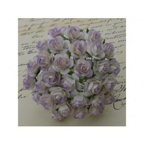 Odprte vrtnice, vijola bele