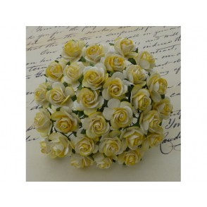Odprte vrtnice, rumena bela
