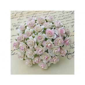 Odprte vrtnice, krem nežno roza