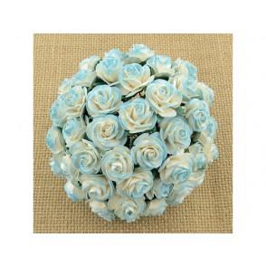 Odprte vrtnice, krem svetlo turkizne
