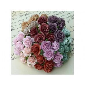 Odprte vrtnice, mix barv, vintage