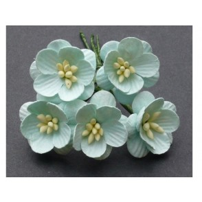 Češnjevi cvetovi, pastelno zeleni
