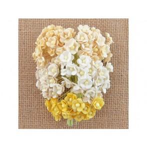 Srčkasti cvetovi, mini, mix rumena