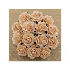 Odprte vrtnice, svetla marelična