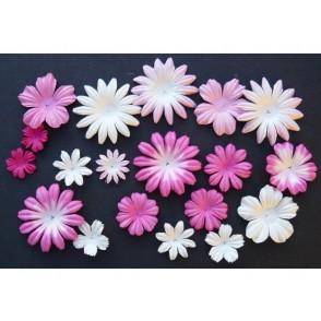 Cvetovi, mix roza