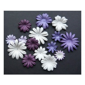 Cvetovi, mix vijola