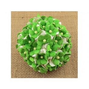 Srčkasti cvetovi, zeleni in beli