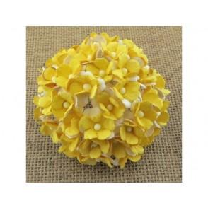 Srčkasti cvetovi, rumeni in beli