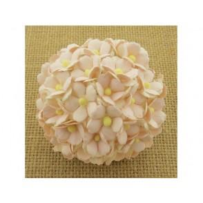 Srčkasti cvetovi, svetlo roza in beli