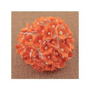 Srčkasti cvetovi, oranžni in beli