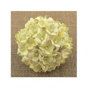 Srčkasti cvetovi, svetlo rumeni in beli