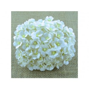 Srčkasti cvetovi, beli