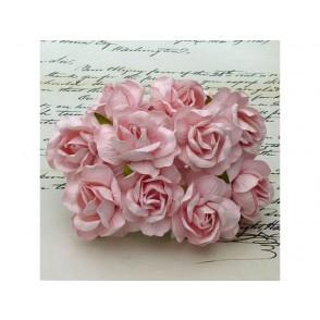 Divje vrtnice, nežno roza