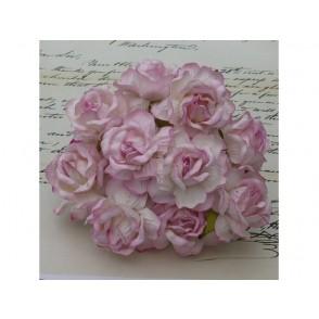 Divje vrtnice, dva tona baby roza