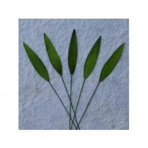 Papirnato listje, trava, zelena