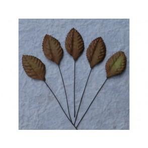 Papirnato listje, rjavo
