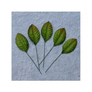 Papirnato listje, zeleno