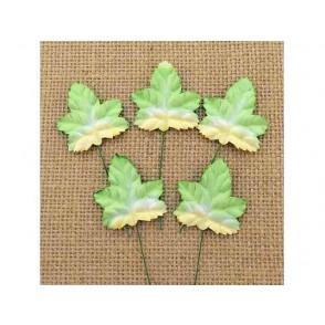 Papirnato listje, javor, zeleno/beli