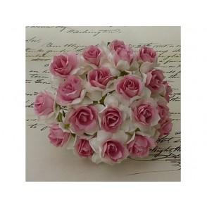 Divje vrtnice, bele s temno roza popkom