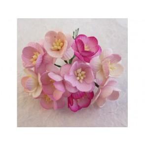 Češnjevi cvetovi, mix roza