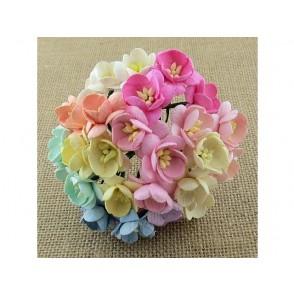 Češnjevi cvetovi, mix pastelne barve